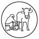 cows-are-milked-with-hands_1